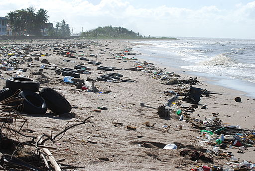 The problem with plastic waste.