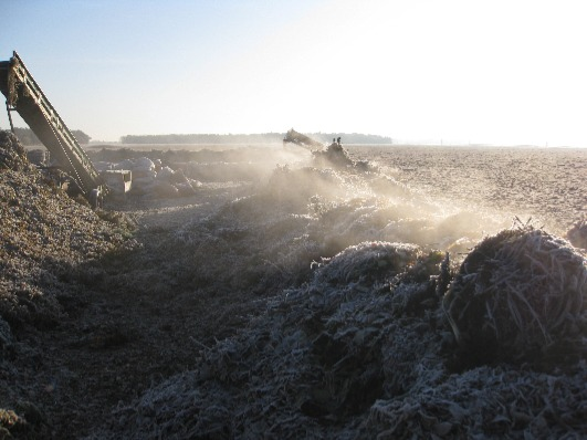 Image shows Compost Accredited Quality Protocol type windrow.
