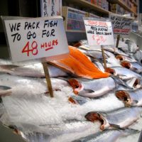 The fish we eat produces a lot of fish waste!